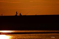 たそがれの釣り人たち