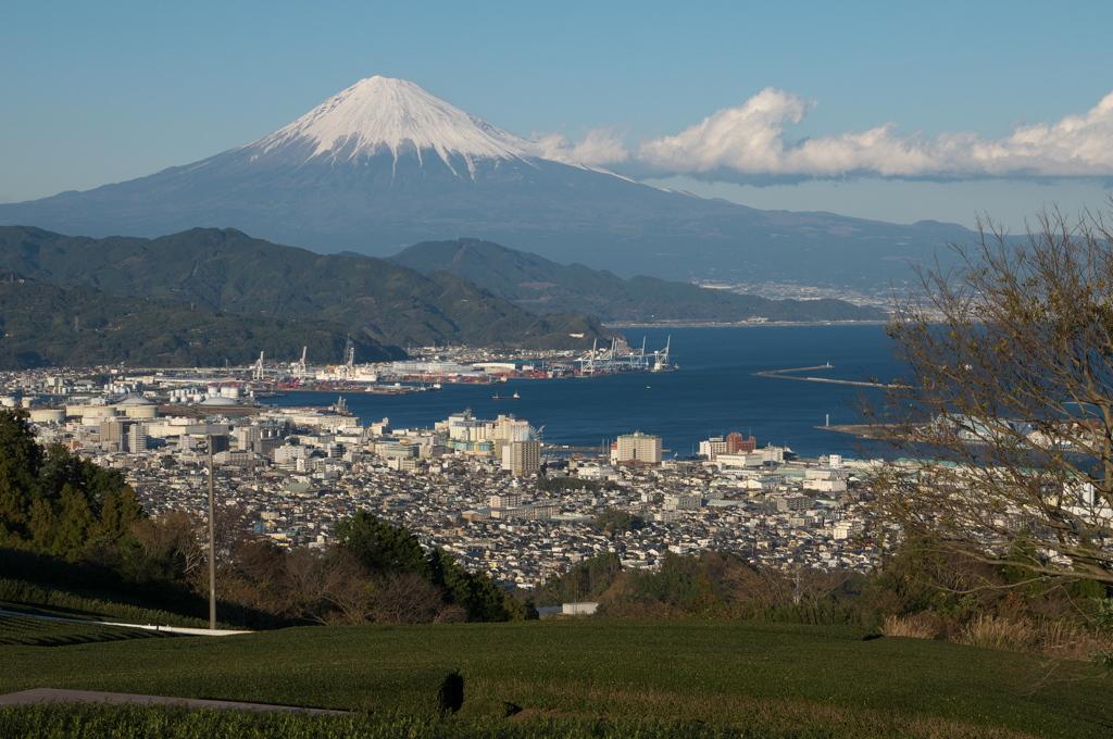 日本平・富士山