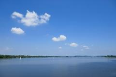 渡良瀬遊水地 谷中湖
