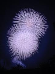いせはら芸術花火大会_09