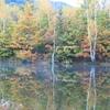 乗鞍高原の秋・1