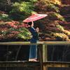 日本の美〃其の一