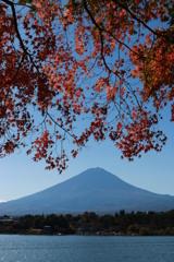 富士と紅葉・1