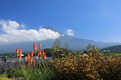 富士山(山開き)
