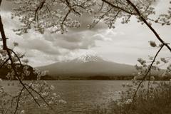 富士と桜と湖と雲と