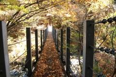 山の吊り橋