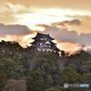 朝の彦根城