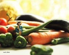 夏野菜のフチ子さん