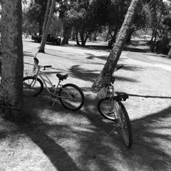 貸自転車の休息