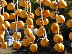 秋の日に(干し柿)