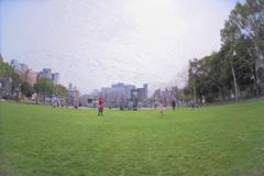 公園さんぽ