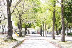 葉桜の下ガードマン二人