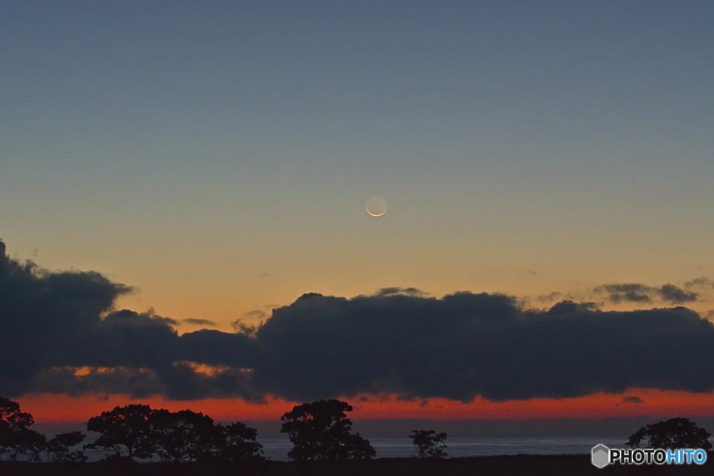 夜明け・か細い月