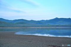 干潟で見た朝景色