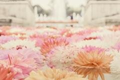 Bloom into Rush -Ⅲ