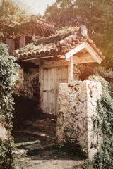 Lost Palace Visits -19
