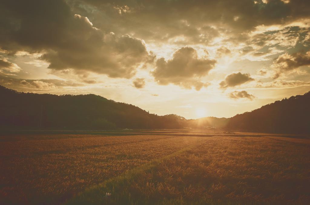 金濁する夕辺