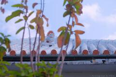 Lost Palace Visits -16