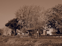 ローカル線駅舎。