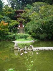 浄瑠璃寺苑池