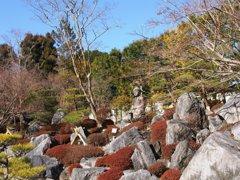 當麻寺浄土庭園
