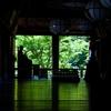 緑映える長谷寺