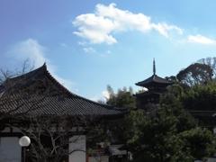 冬の當麻寺