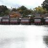 11月23日 京都 24