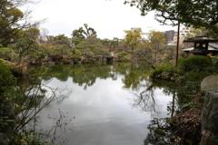 3月6日 相楽園 10