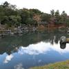 11月23日 京都 35