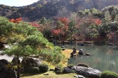 11月23日 京都 31