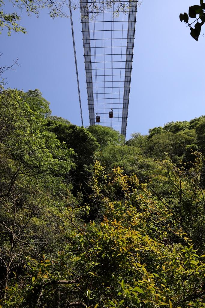 5月28日 布引の滝 11