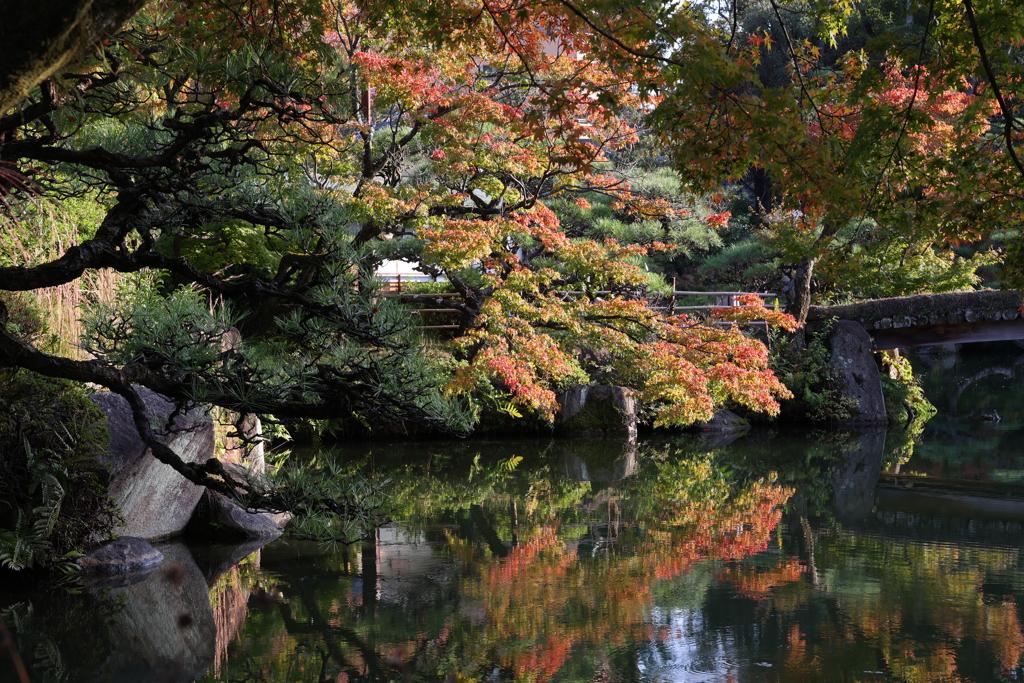 10月31日 相楽園 27