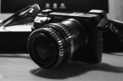 私にとってカメラとは、楽器。
