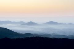 朝霧に浮かぶ