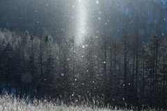 細氷の輝き