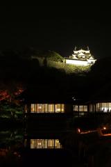彦根城と臨池閣と映り込み