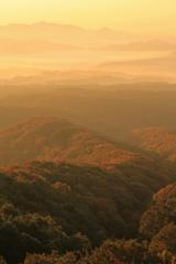 大山の紅葉を撮りに行ったけどなぜか雲海を撮って来た。