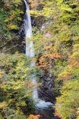 上半分大山滝