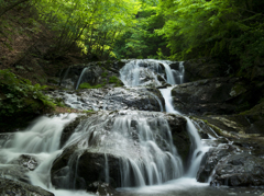 新緑の魚止めの滝