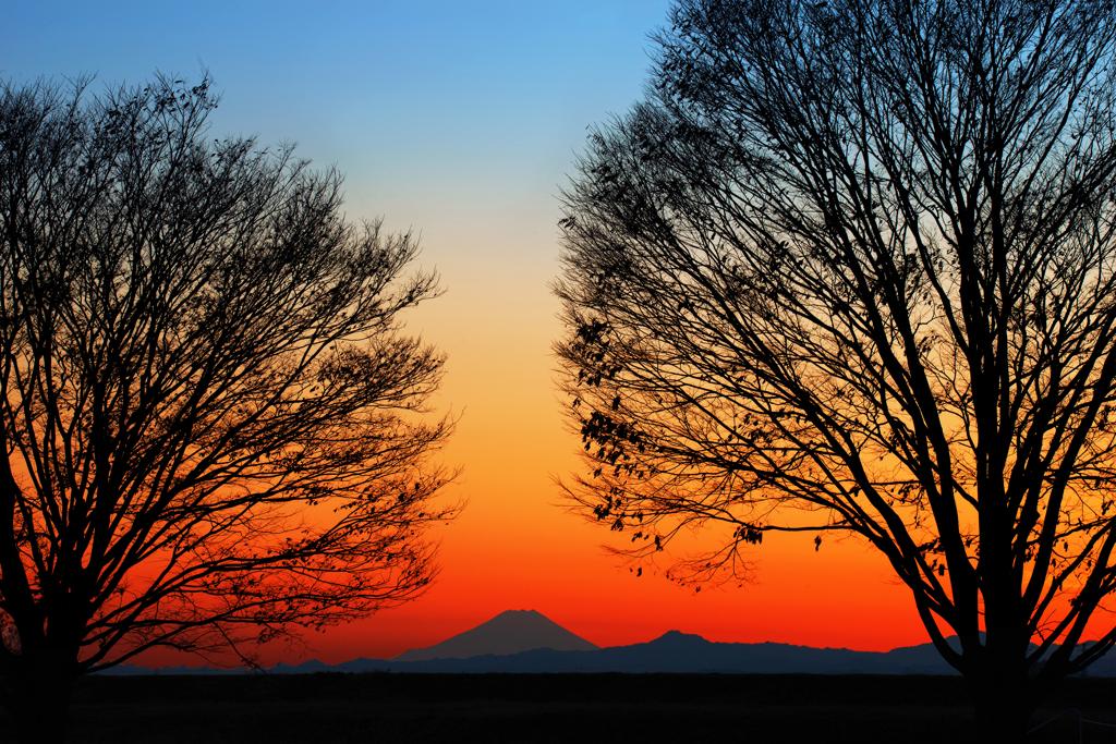 澄明な夕焼け