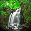 新緑の浅間大滝