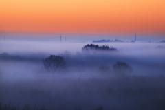朝霧煙る湿原