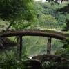 庭園風景 6 橋