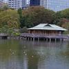 池の中の茶屋