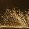 噴水 日比谷公園 1月