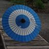 六義園レンタル日傘