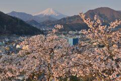 平日の富士山1085