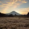 週末の富士山(新作303)