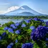 平日の富士山51